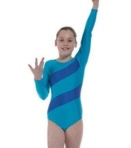 Tappers and Pointers Diagonal Stripes Long Sleeve Gymnastic Leotard